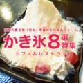 暑い夏におすすめ!福岡の写真映えする絶品かき氷8選