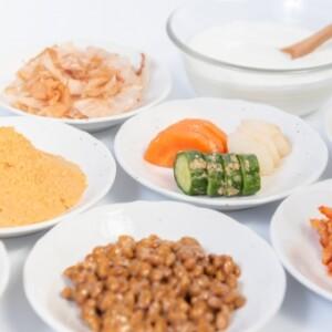 福岡発酵食品