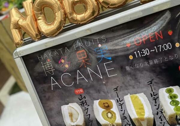 博多果実Acane